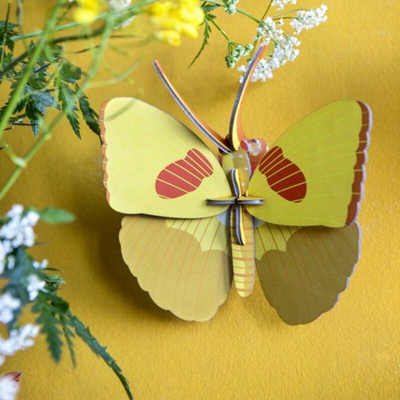 papillon jaune studio roof