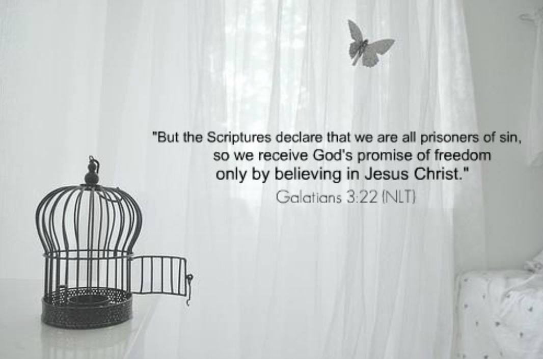 Day 5: 'Breaking Free' Bible Study observations