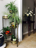 6 Tier Plant Stand