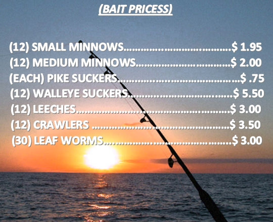 Live Bait Prices