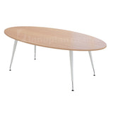 Oval Shape Meeting Table (JS Metal Leg)