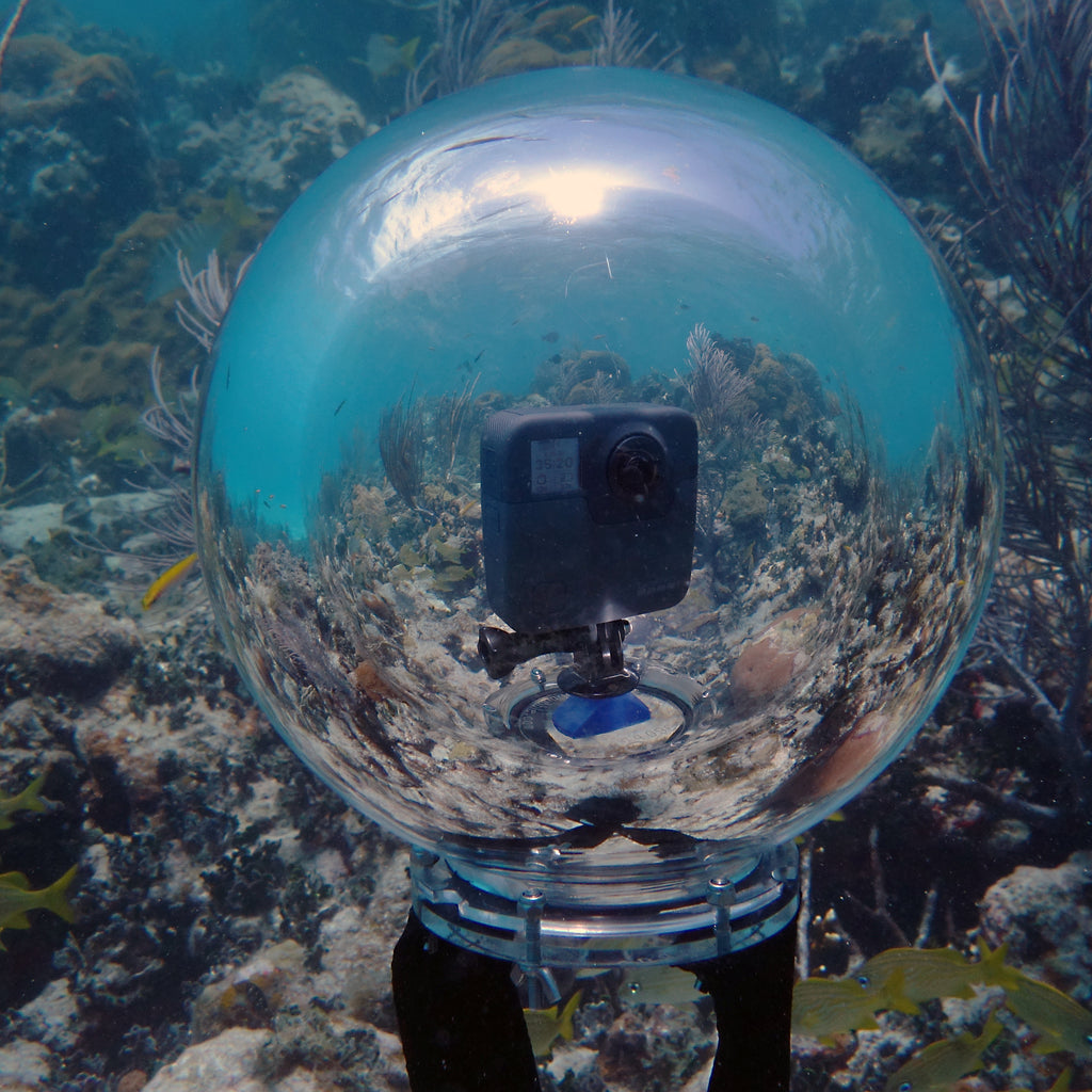 5K 360 Video Underwater with GoPro Fusion in 360bubble