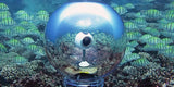 360bubble (2 week delivery) - underwater housing for 360 cameras - 10M