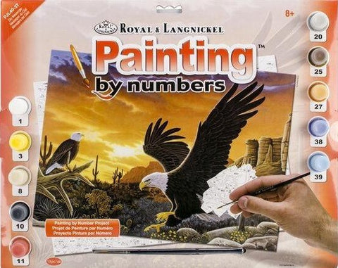 Paint By Number Junior Large Sky Messenger
