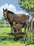 Paint By Number Junior Small Mare & Foal