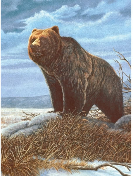 Paint By Number Junior Small Grizzly Bear