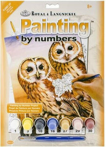 Paint By Number Junior Small Tanny Owls