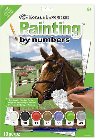 Paint By Number Junior Small Equine Paddock ROYPJS88
