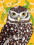 Maureen Owl 300pc Puzzle