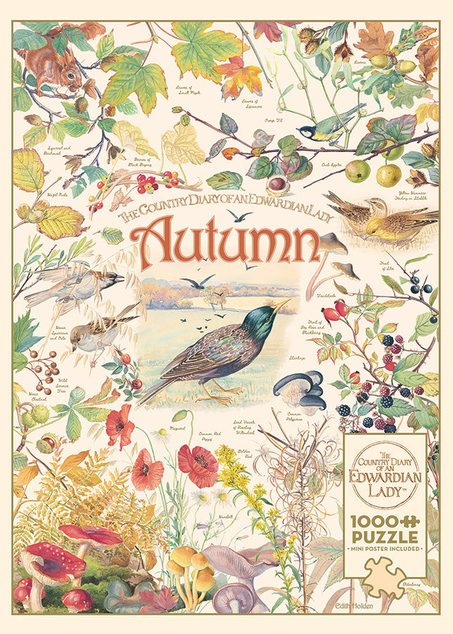 Country Diary: Autumn 1000pc Puzzle