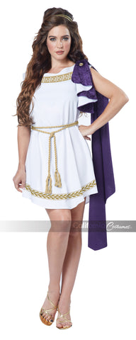 Grecian Toga Dress in Packaged Costumes from CALIFORNIA at Buffalo Breath Costumes - 1