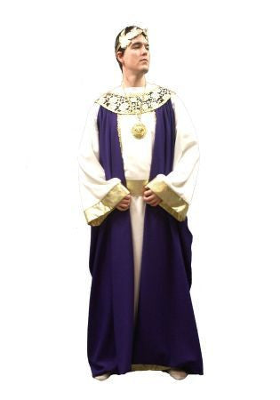 Deluxe Purple Roman Emperor in Theatrical Costumes from BuffaloBreath at Buffalo Breath Costumes