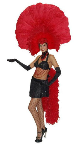 Vegas Show Girl in Theatrical Costumes from BuffaloBreath at Buffalo Breath Costumes