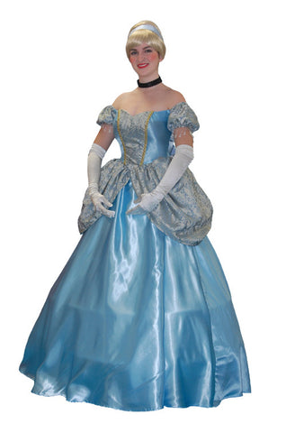 Cinderella Off the Shoulder Dress in Theatrical Costumes from BuffaloBreath at Buffalo Breath Costumes