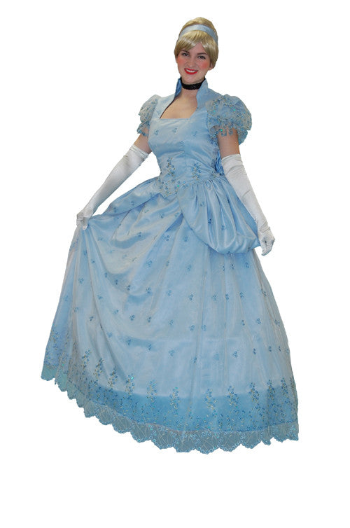 Cinderella Goes to the Ball in Theatrical Costumes from BuffaloBreath at Buffalo Breath Costumes
