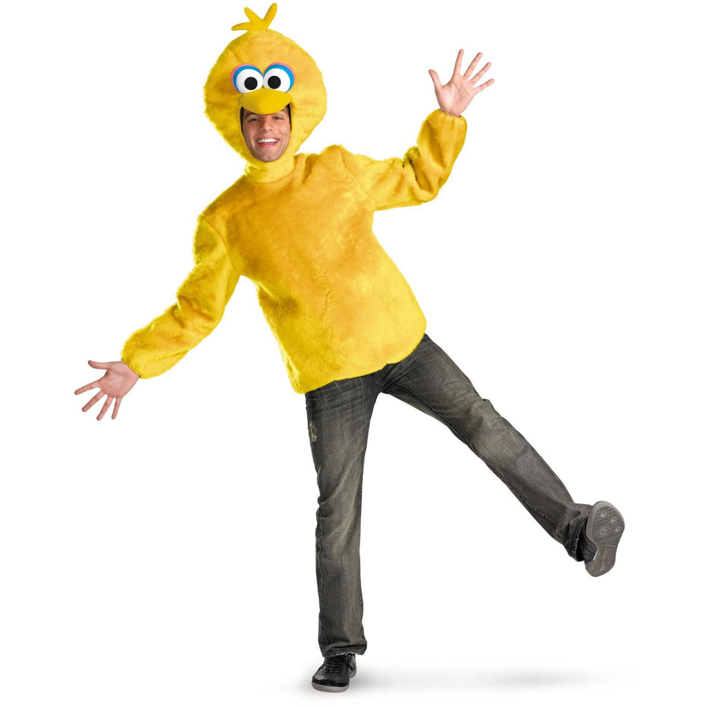Sesame Street Big Bird costume by Disguise at Buffalo Breath Costumes in San Diego