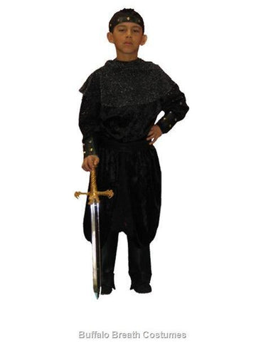 Knight (child size) costume rental or purchase at Buffalo Breath Costumes in San Diego