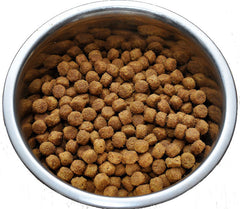 Best Dog Food Singapore