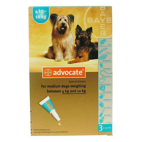 Advocate For Medium Dogs (4 - 10kg) - Push Pets Singapore