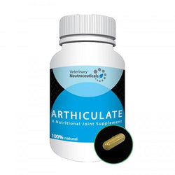 Nutripe Arthiculate Joint Supplement - Push Pets Singapore