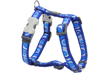 Red Dingo Circadelic Blue Harness