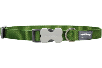 Red Dingo Classic Dog Collar Green