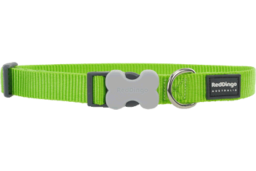 Red Dingo Classic Dog Collar Lime Green