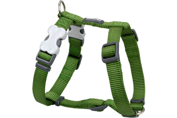 Red Dingo Classic Harness Dog Green