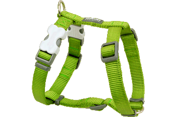 Red Dingo Classic Harness Dog Lime Green