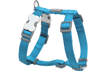 Red Dingo Classic Harness Dog Turquoise