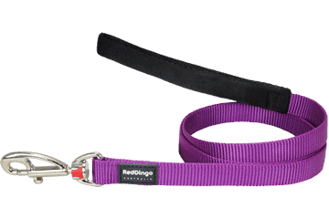 Red Dingo Classic Lead Purple