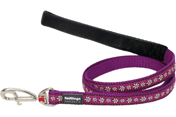 Red Dingo Daisy Chain Leads Purple
