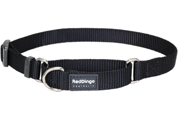 Red Dingo Martingale Half-Check Collars Black
