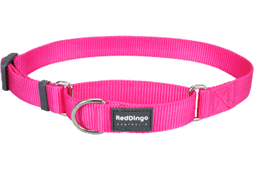 Red Dingo Martingale Half-Check Collars Hot Pink