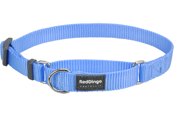 Red Dingo Martingale Half-Check Collars Medium Blue