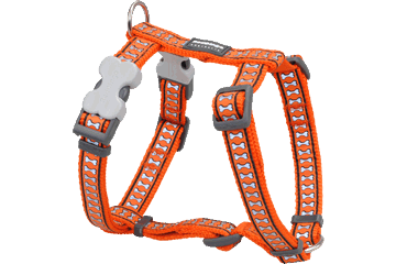 Red Dingo Reflective Dog Harness Orange