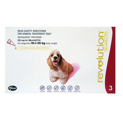 Revolution: For Medium Dogs (10.1 - 20kg) - Push Pets Singapore