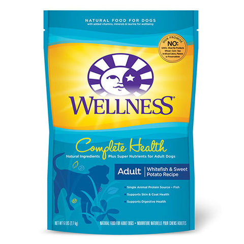 20% OFF + FREE GIFTS Wellness Complete Health Whitefish & Sweet Potato Dry Dog Food - Push Pets Singapore