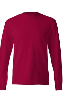 Hanes Tagless Long Sleeve Tee