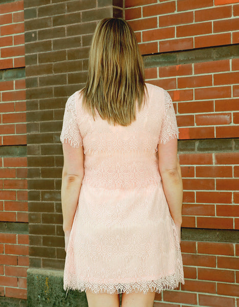 Lace Dress In Blush