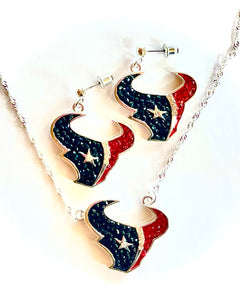 Houston Texans Crystal Logo Necklace & Earrings