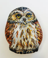 Little Owl Painted Rock