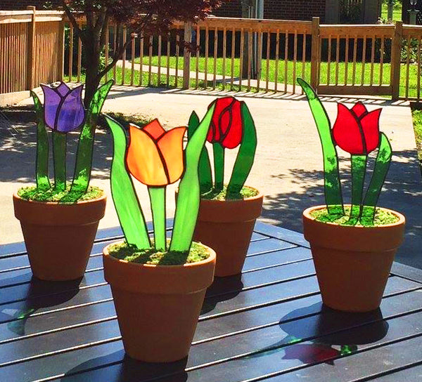 Stained Glass Miracle Tulips