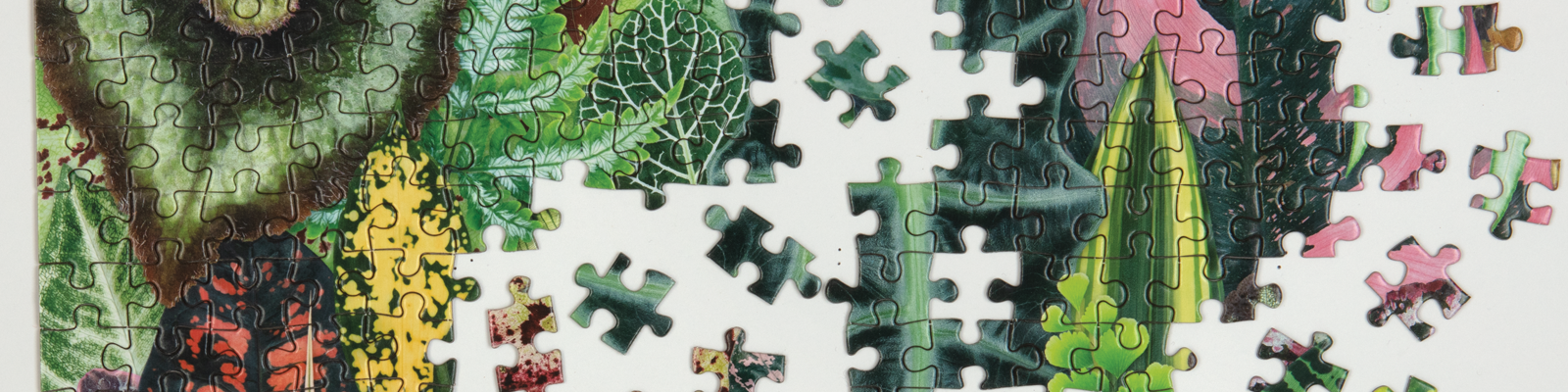 Jigsaw Puzzles from Galison