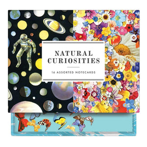 Ben Giles Natural Curiosities Greeting Assortment Notecards Greeting Cards Galison