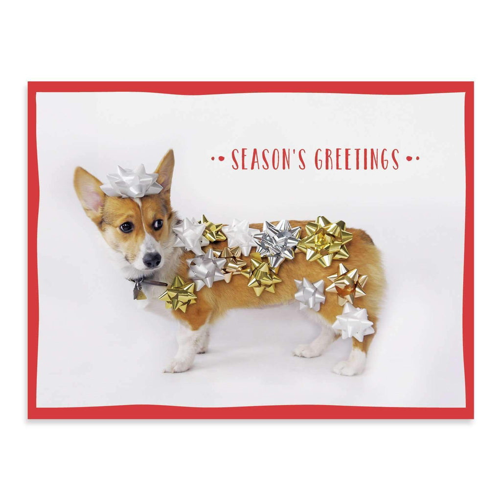 Festive Furry Friends Deluxe Notecard Collection Holiday Notecards Galison