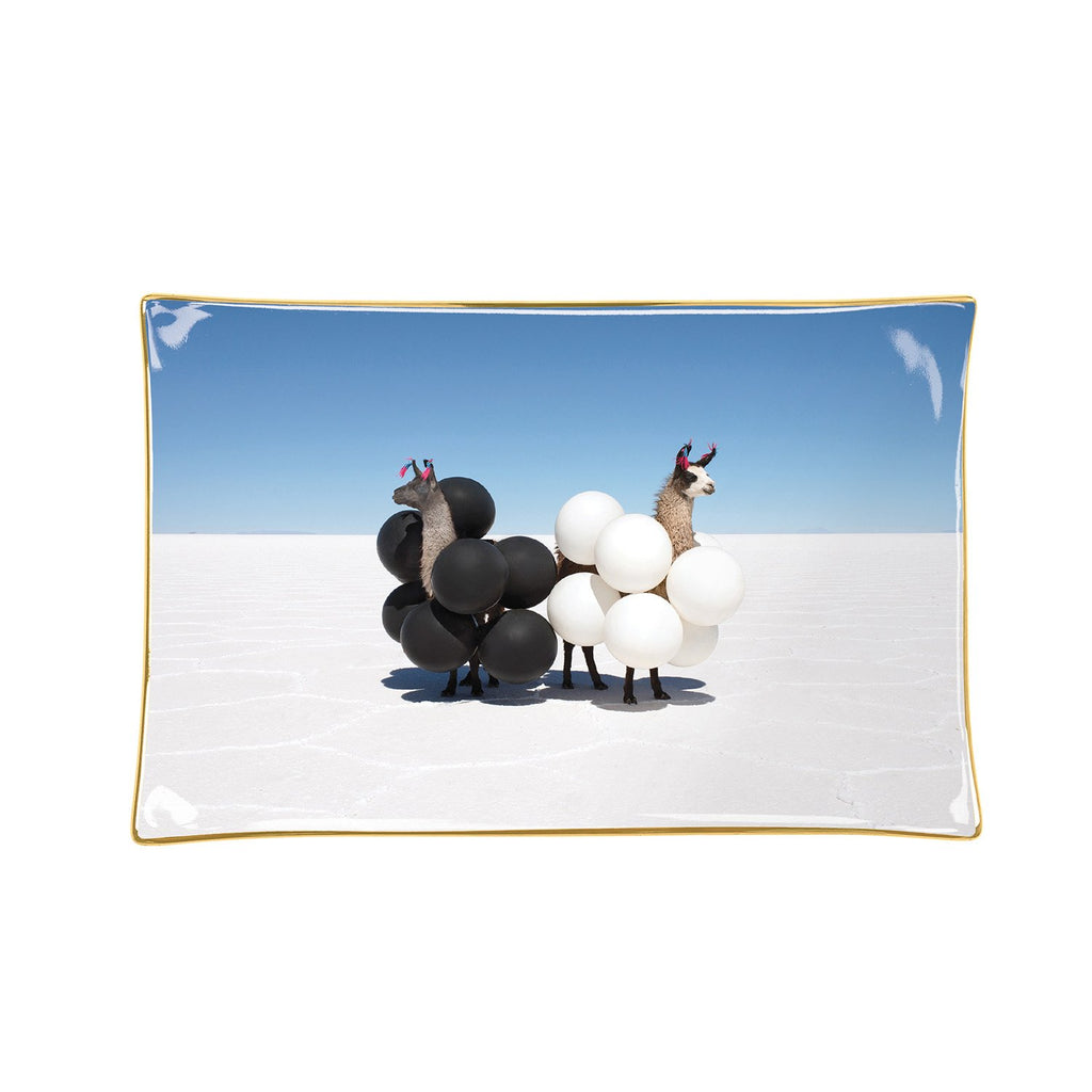 Gray Malin Llamas Porcelain Tray Porcelain Trays Gray Malin Collection