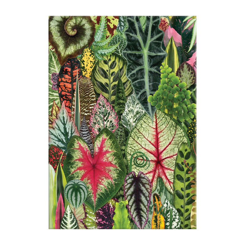 Houseplant Jungle A5 Journal Journals and Notebooks Galison