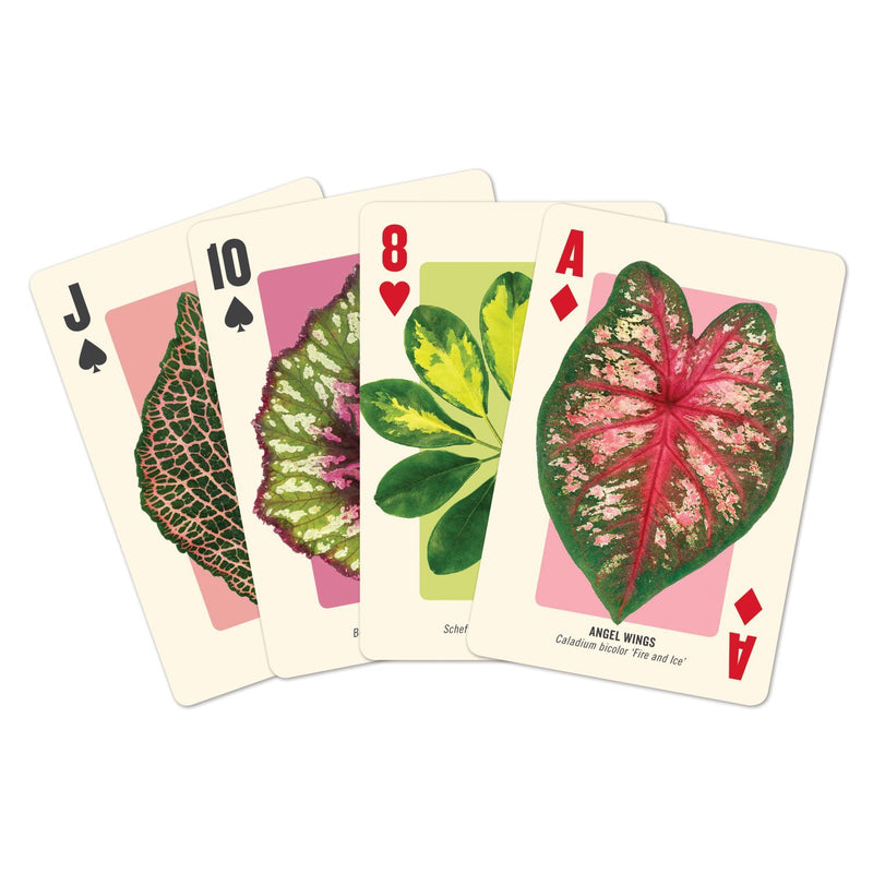 Houseplant Jungle Playing Card Set Playing Cards Galison