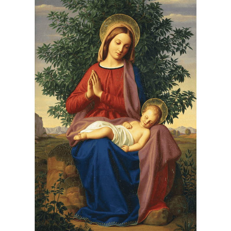 Madonna And Child Half Note Boxed Cards Holiday Notecards Galison